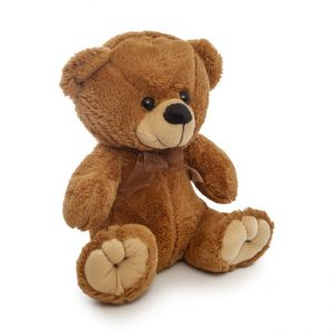 Alvin 30cm Teddy Flowers with Style