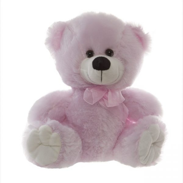 Alvin Pink 25cm Teddy Flowers with Style
